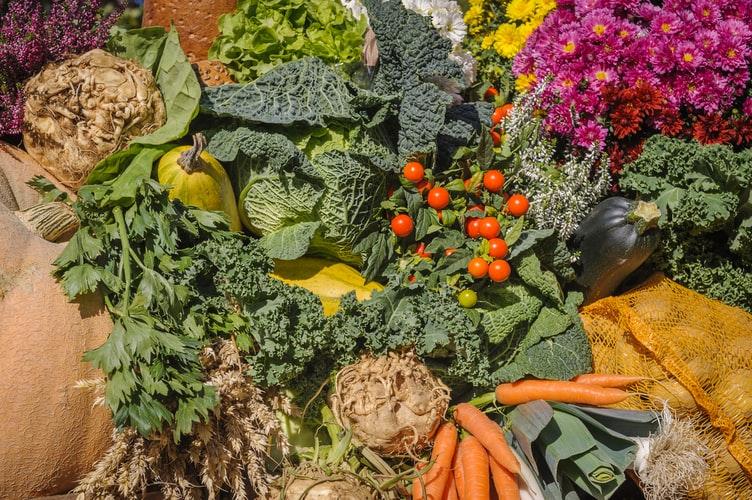 Frutaselegumes - O que é slow food e suas vantagens