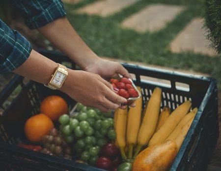 alimentos saudaveis e saude 1 450x350 - Preço da alimentação saudável versus preço da sua saúde